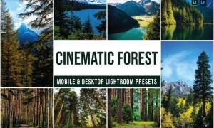 Forest Mobile and Desktop Lightroom Presets