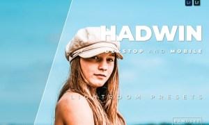 Hadwin Desktop and Mobile Lightroom Preset