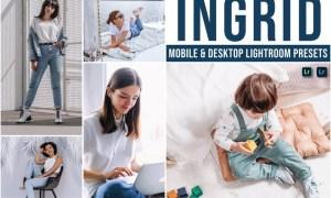 Ingrid Mobile and Desktop Lightroom Presets