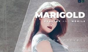 Marigold Desktop and Mobile Lightroom Preset