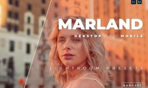 Marland Desktop and Mobile Lightroom Preset