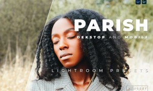 Parish Desktop and Mobile Lightroom Preset