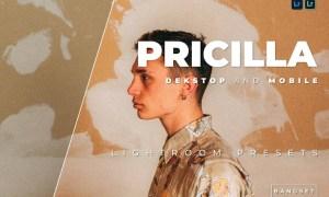 Pricilla Desktop and Mobile Lightroom Preset