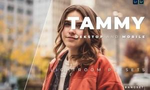 Tammy Desktop and Mobile Lightroom Preset