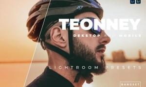 Teonney Desktop and Mobile Lightroom Preset