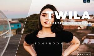 Twila Desktop and Mobile Lightroom Preset