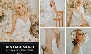 Vintage Mood Photoshop Action & Lightrom Presets