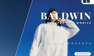 Baldwin Desktop and Mobile Lightroom Preset