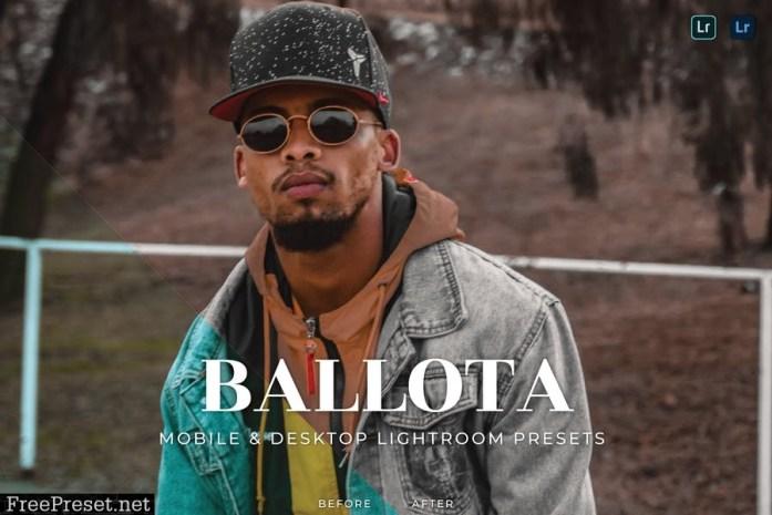 Ballota Mobile and Desktop Lightroom Presets