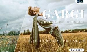 Gargi Desktop and Mobile Lightroom Preset