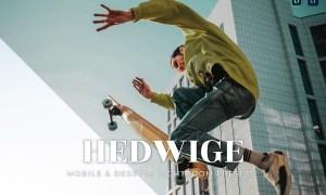 Hedwige Mobile and Desktop Lightroom Presets