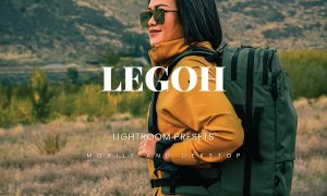 Legoh Lightroom Presets Dekstop and Mobile