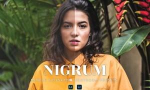 Nigrum Mobile and Desktop Lightroom Presets