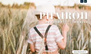 Phairoh Desktop and Mobile Lightroom Preset