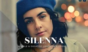 Silenna Mobile and Desktop Lightroom Presets