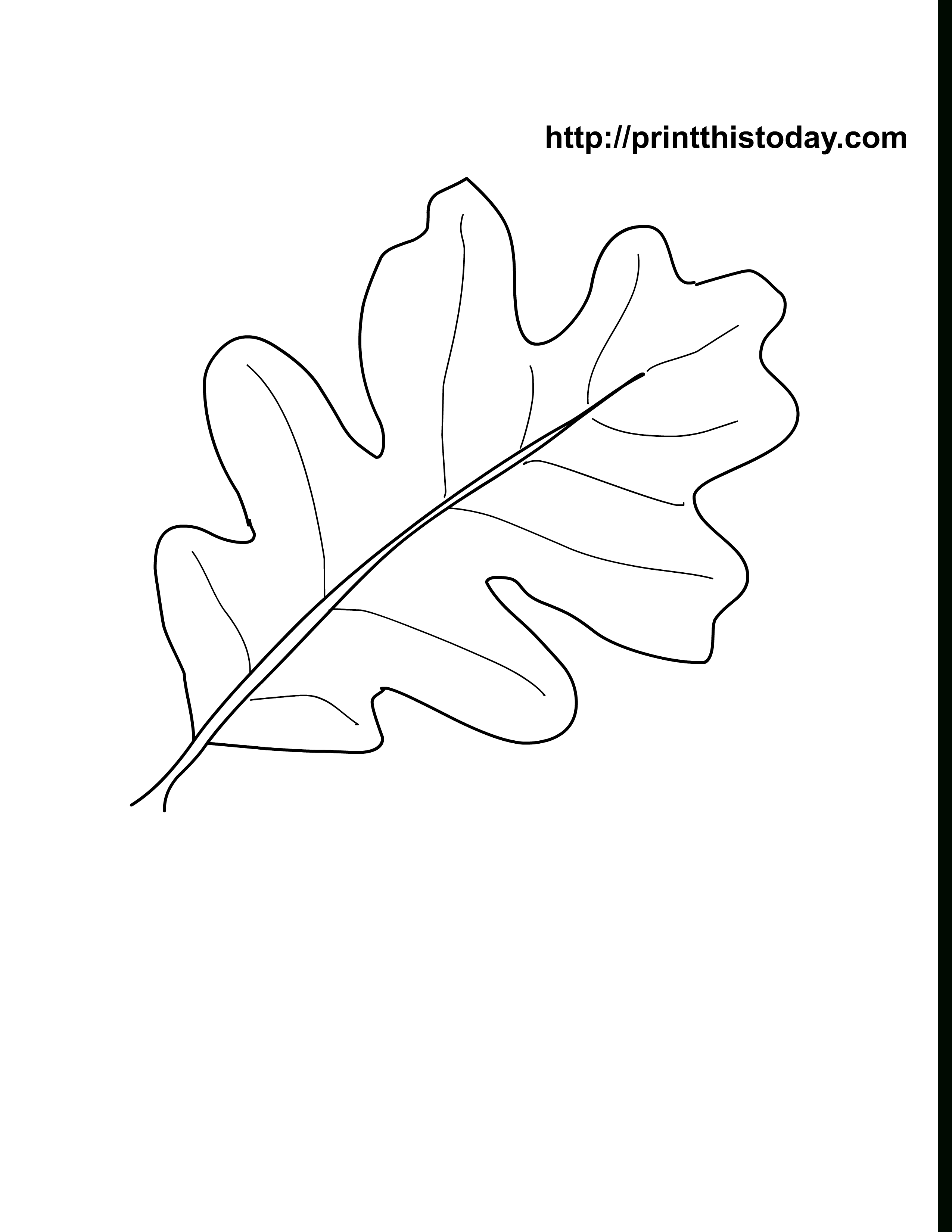 Oak Leaves Coloring Pages Printable