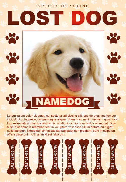 Lost Dog Free Flyer Template Download For Photoshop