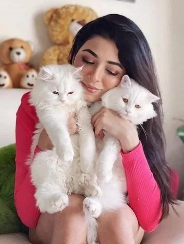 Afreen Alvi with her Pet Cats
