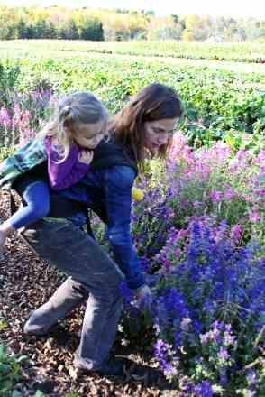Kristin picking farm flowers
