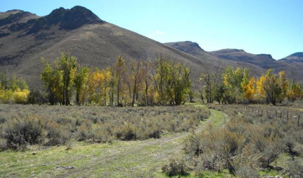 Mychel Matthews Jim Cenarussa's ranch, now owned by the Nature Conservancy, again for sale
