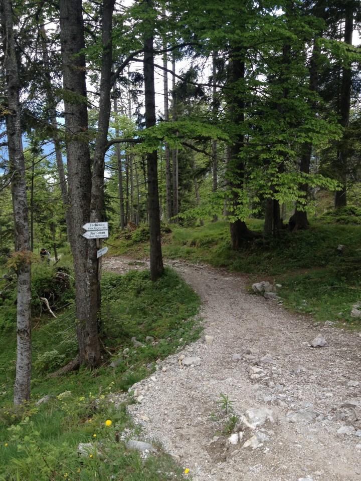Auftakt Sachenbach Trail