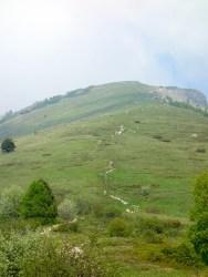 Der Trail oberhalb 1450m