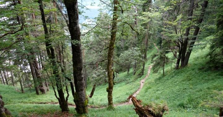 Rißsattel Trail