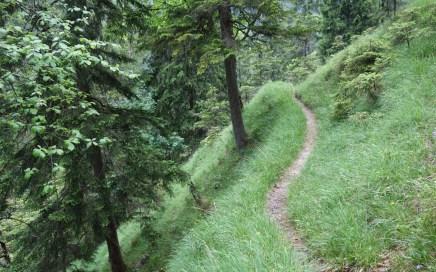 Heuberg Trail