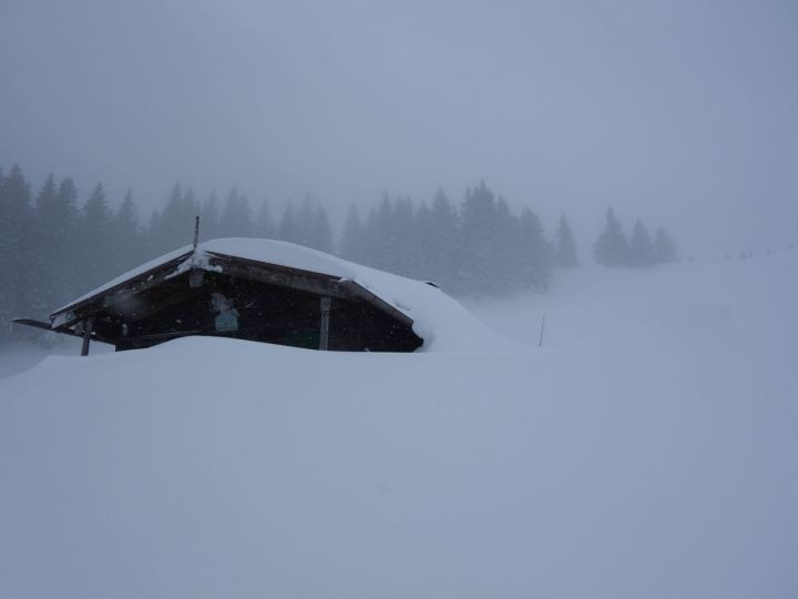 Massenhaft Schnee, verträumte Almen...