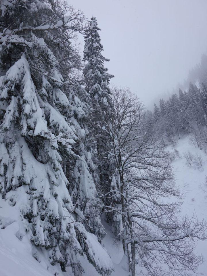 Der tief verschneite Mittertaler Graben....