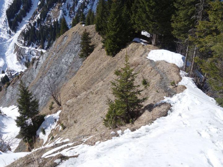 An der Waldgrenze wechselt man am Besten über die Steilgrasflanke in die Rinne, halb so wild....