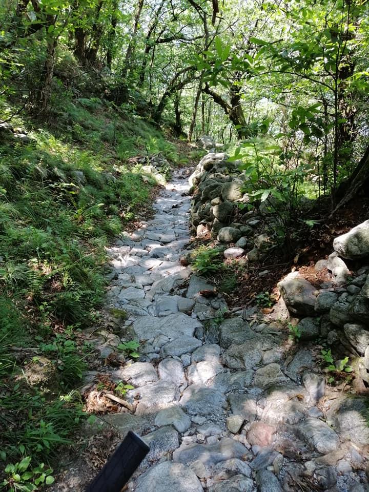 Lago di Mezzola Trail