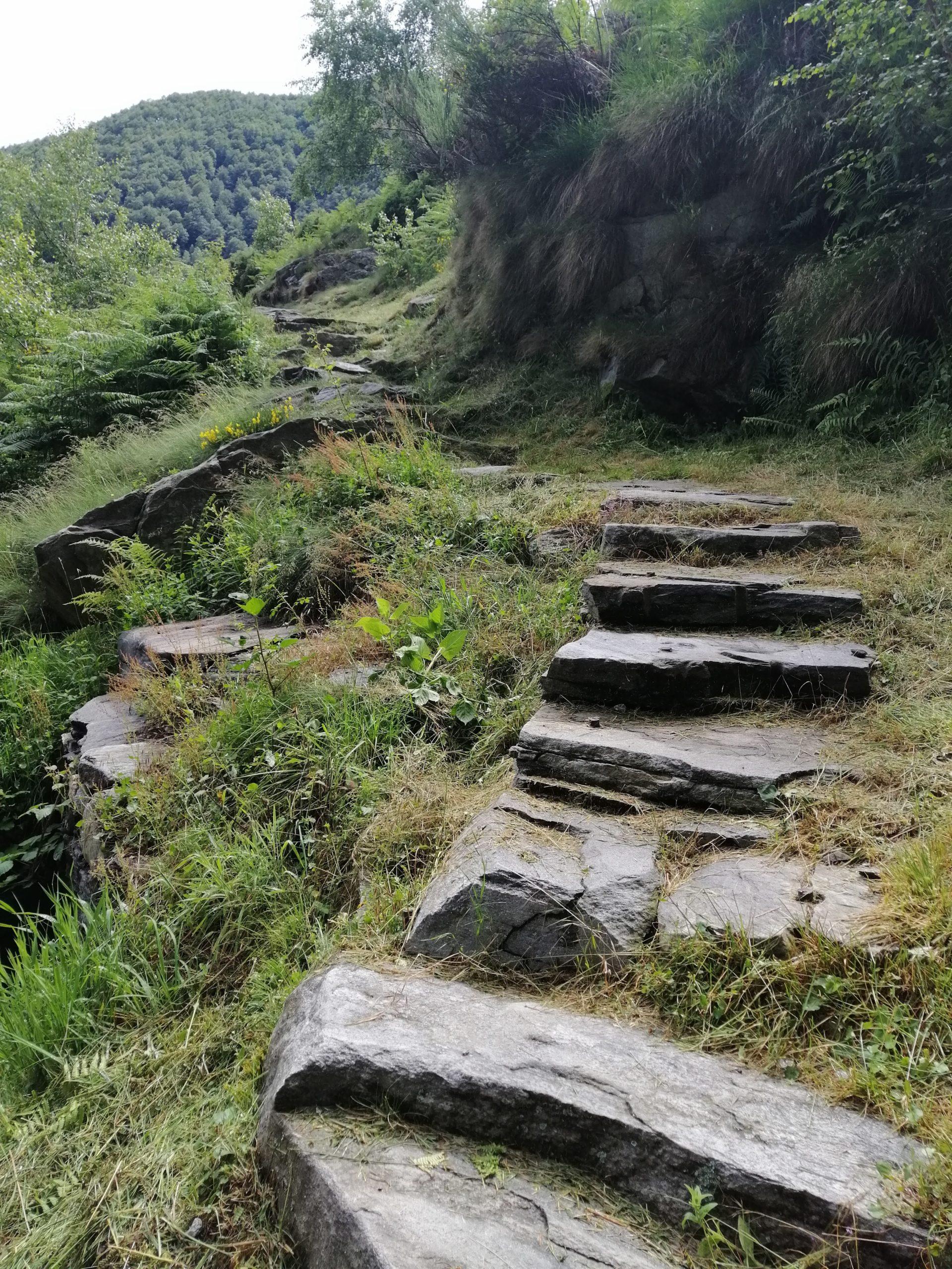 Locarno Trails