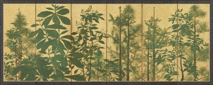 Trees; Sōtatsu school, I'nen Seal; Japan, mid-17th century; pair of six-panel folding screens; ink, colors, and gold on paper; Freer Gallery of Art, F1962.30–31