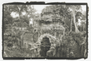 Taa Prohm, Angkor Wat, black and white photo by Lois Conner
