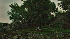 a figure alone in the woods, detail from photo from Perspectives: Hai Bo