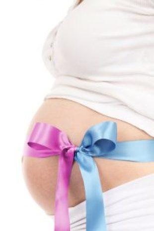 pregnancy belly