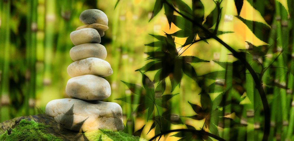 stacked stones in bamboo forest