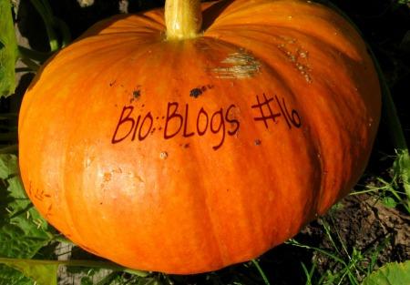 Blogs #16