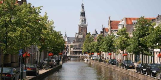 Wietzaden kopen Alkmaar