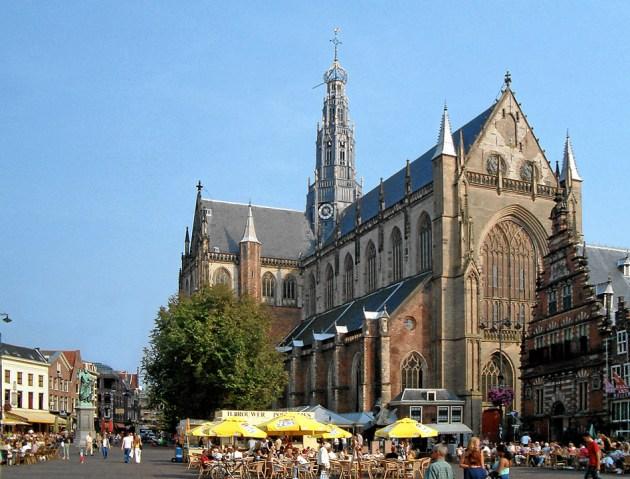 Wietzaden kopen in Haarlem