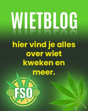 Buy cannabis seeds