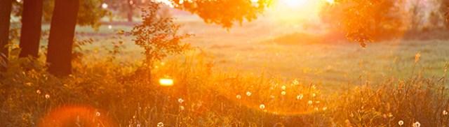 daylightsaving_sunset