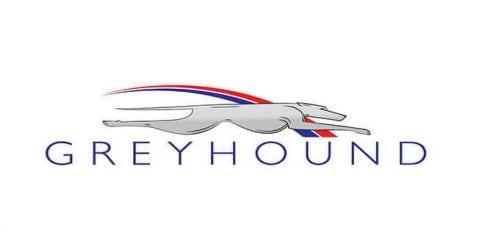 7 Travel Bus Companies Like Greyhound