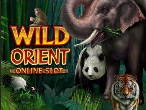 Wild Orient slot game | Respin feature & bonuses | Microgaming Casino