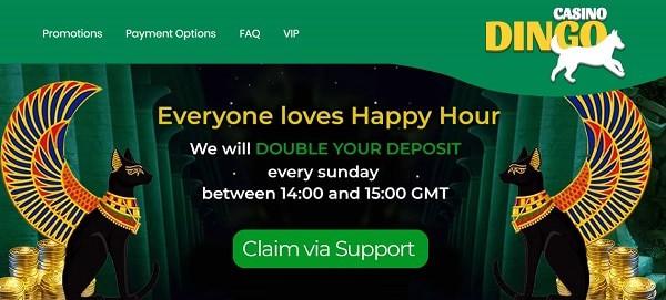 Special bonuses to online casinos by Dingo