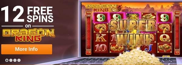 Emu Casino 12 no deposit free spins