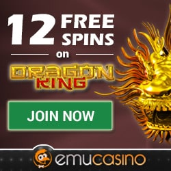 Online casino no deposit bonus no download instant play australia free spin no deposit bonus codes 2014