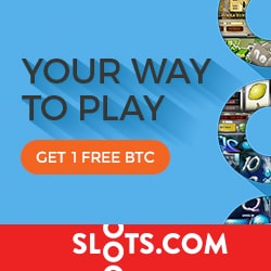 Slots.com Casino 100% bonus up to 1 BTC free on RTG games
