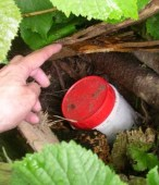Geocache_ item found by Miaow Miaow wikimedia commons